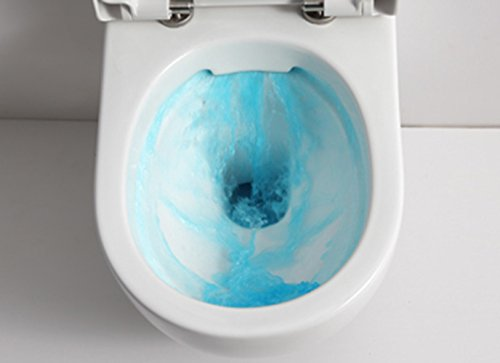 ssww design h nge wc sp lrandlos toilette inkl wc sitz. Black Bedroom Furniture Sets. Home Design Ideas