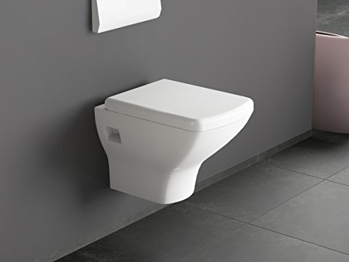 wc mit bidetfunktion kaufen wc mit bidetfunktion online ansehen. Black Bedroom Furniture Sets. Home Design Ideas